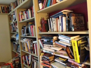 bookshelves at home